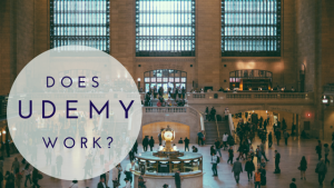 Does Udemy Work?