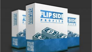 What is Flipside Profits- Great Flipping Domains for Profit Method